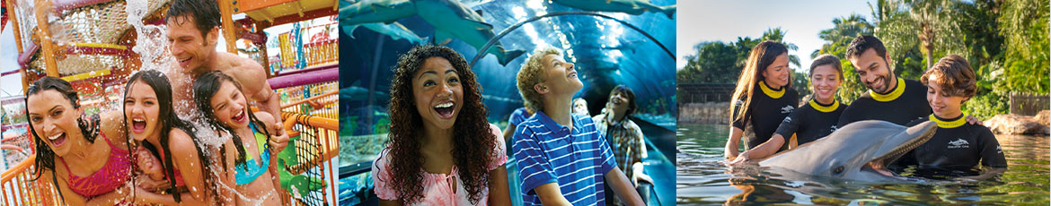 Earn #rewardDisplaySmall($store) Cash Back from Rakuten.ca with SeaWorld Coupons, Promo Codes